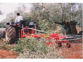 > ROL 240 / 320 - 9BR TA - HILERADOR DE RAMON - 1 Rotor CBR Ceccato