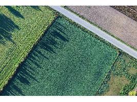 Agricultura abonará 2,6 millones por emplear métodos de producción sostenible