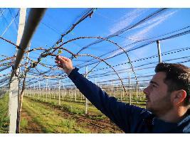 Agroexpo abordará el futuro del sector primario en una mesa temática sobre la importancia del relevo generacional en la agricultura y la ganadería.
