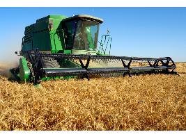 Autorizada la suscripción de un Convenio entre ENESA y AGROSEGURO para la ejecución de los planes de seguros agrarios combinados en 2019