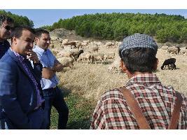 CLM: 3.500 agricultores de montaña reciben desde este viernes 5,4 millones en ayudas