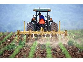 """Debate de la PAC: """"El 20% de los pagos debe destinarse a una ayuda redistributiva para apoyar a la agricultura y ganadería familiar""""."""