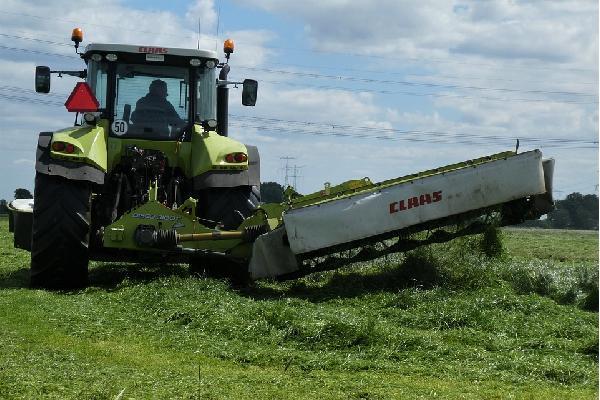 El Gobierno revisa con las comunidades autónomas el protocolo de actuación de la Guía para prevenir brotes en el sector agrario