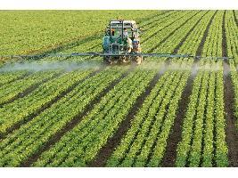 El pago de la ayuda complementaria a jóvenes agricultores se incrementa un 16% en la campaña 2019