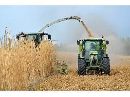 El secretario general de Agricultura y Alimentación señala la necesidad de introducir los costes de producción en la dinámica de negociación