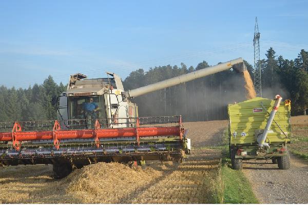 El sector agrario recibe 300 millones entre febrero y marzo en pagos directos de la PAC hasta alcanzar los 4.727 millones desde octubre.