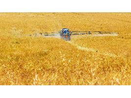 Empieza a subir el precio del cereal ahora que suben las temperaturas