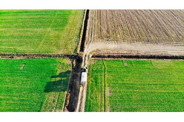 La CE presenta su nuevo Plan de Acción Europeo para la Producción Ecológica con la vista puesta en lograr el objetivo del 25% de superficie.