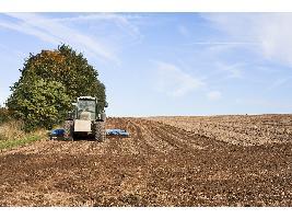 La Comisión Europea ve buenas perspectivas para los mercados agrícolas de la UE en 2021.