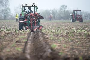 La Conferencia Sectorial de Agricultura acuerda la distribución territorial de más de 123,7 millones de euros para programas de desarrollo rural y agroalimentarios.
