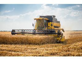 La sequía le cuesta ya a Madrid 35 millones: Pérdidas en el cereal, el olivar, la vid y la ganadería