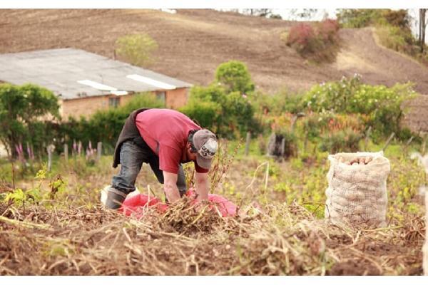 Los pequeños agricultores europeos piden que se les tenga en cuenta para lograr una PAC más justa con vistas a la última negociación