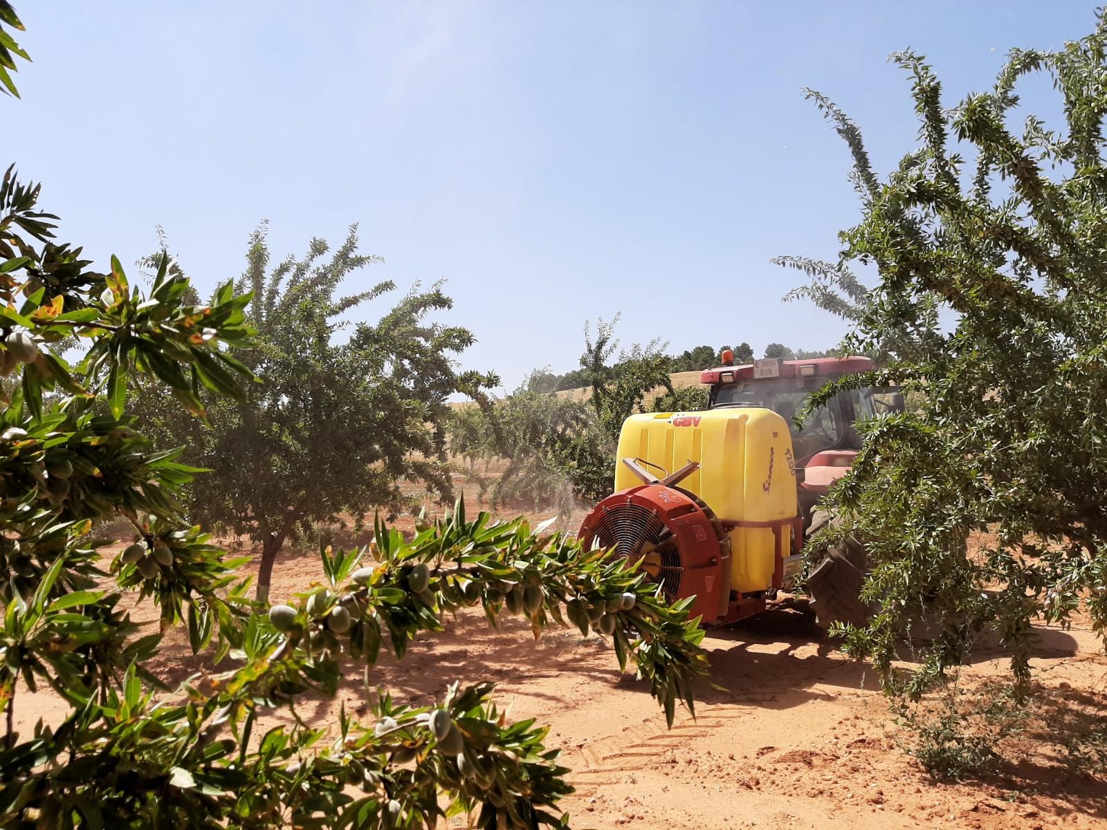 Citfruit-plus suspendido