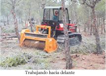 Agarín Trituradora forestal - 5