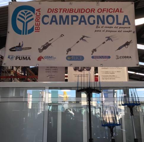 PEINE ACEITUNA CAMPAGNOLA