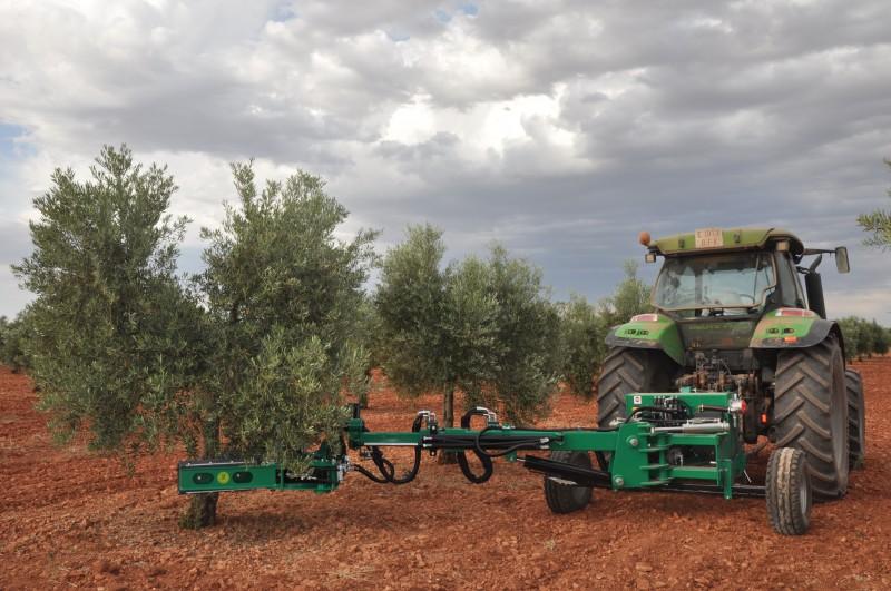 Cómo elegir un buen vibrador para olivo - Página 4 1_Vibrador_de_olivos_Bautista_Santillana_1410535780