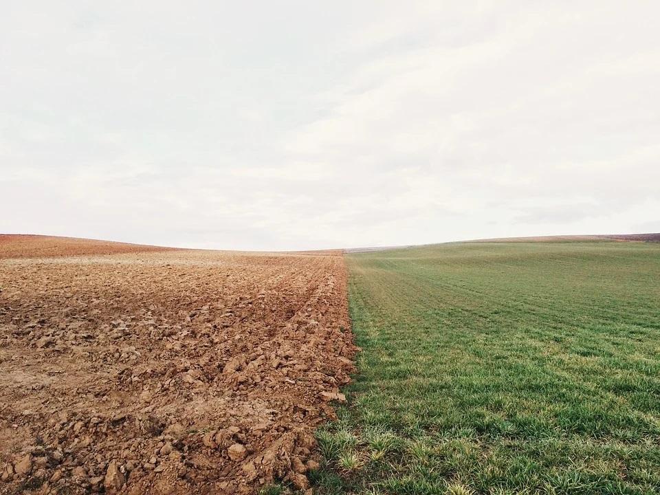 Acuerdo en la UE para la PAC: 60% de los pagos directos a la renta agraria; un 20% para unos ecoesquemas voluntarios