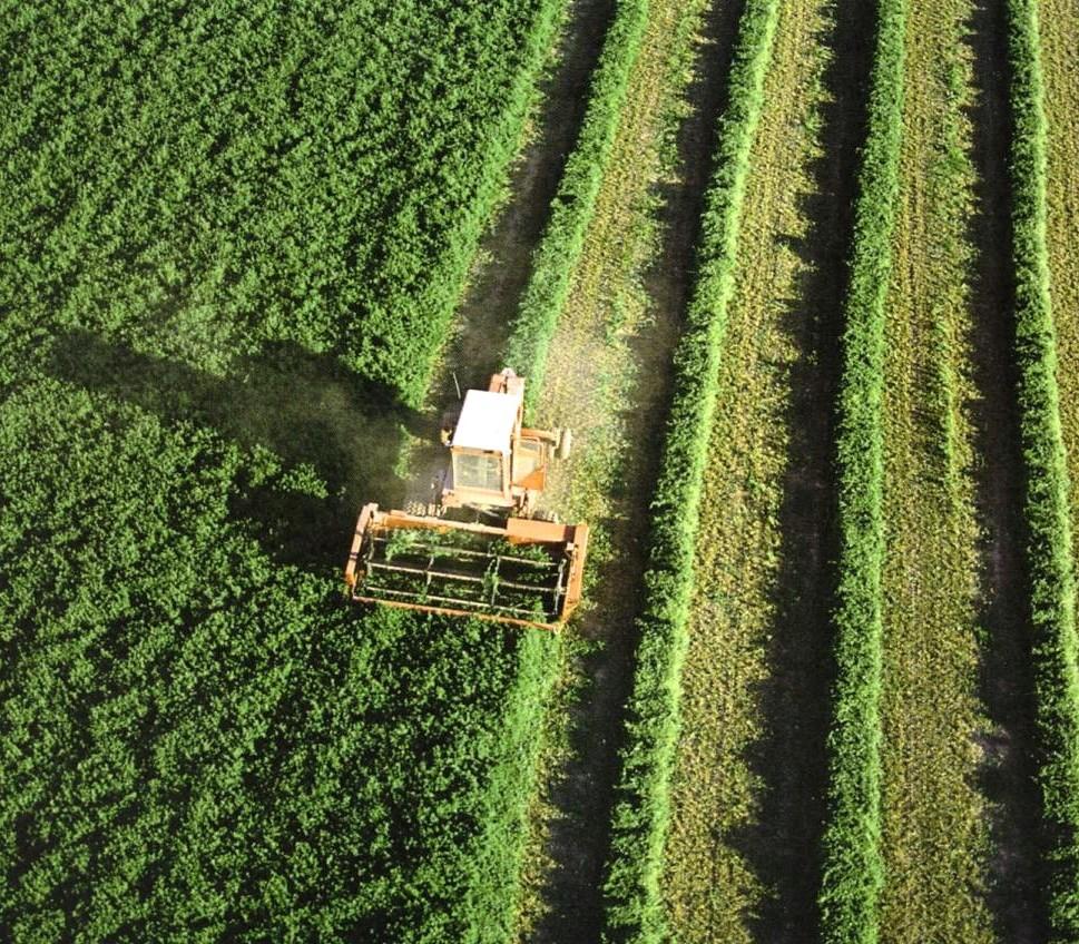 El Gobierno incrementa en 19,88 millones de euros el gasto en seguros agrarios - 0