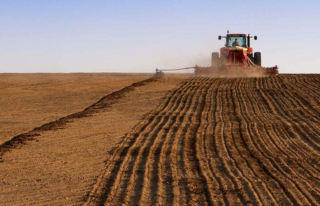 El sector agrario cada vez debe más al subir un 5,8% su endeudamiento pero paga mejor, al bajar el riesgo de impago - 0