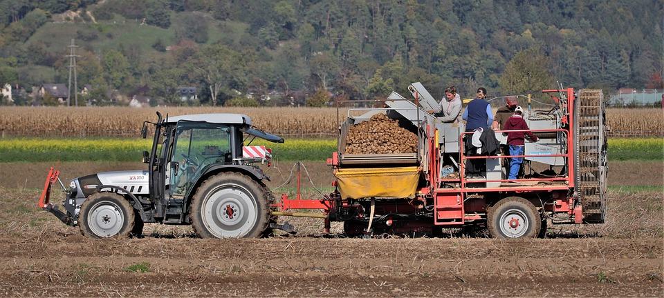 Agricultura ajusta las cuentas y sube una décima, hasta el 4,4%, el alza de la Renta Agraria en 2020.