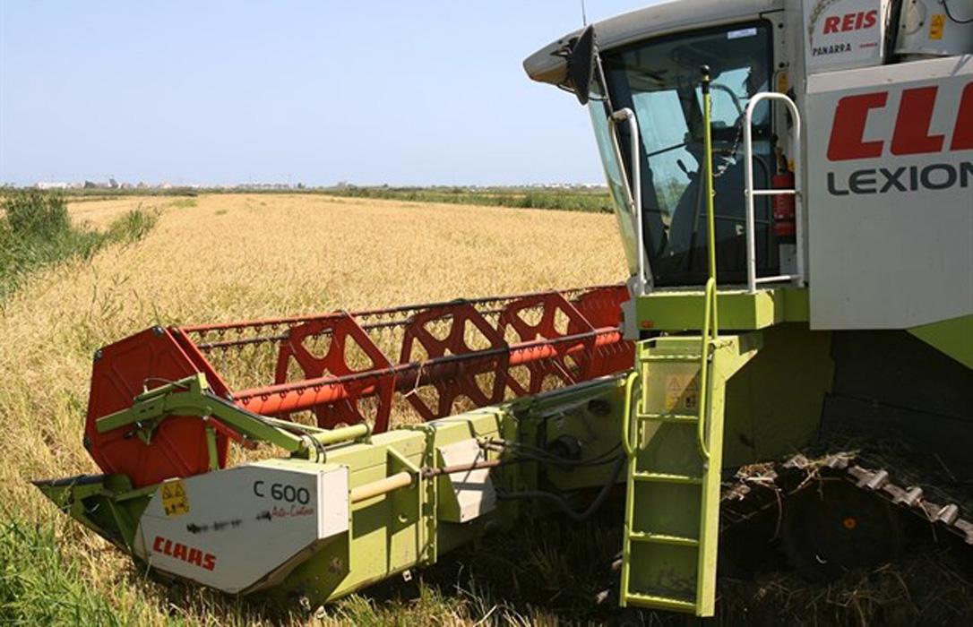 Aviso serio: El seguro agrario corre peligro por falta de compromiso del MAPA y más precio por menos cobertura - 0