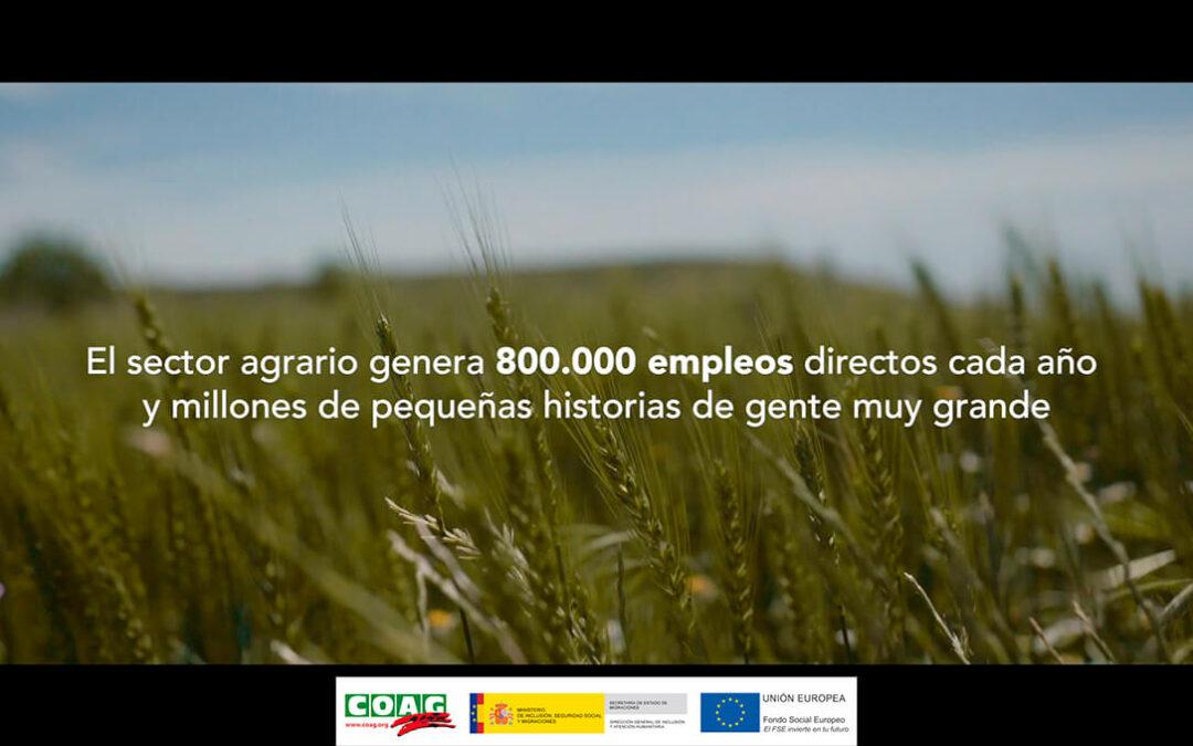 Campaña del propio sector para informar y sensibilizar sobre las buenas prácticas laborales en el sector agrario - 0