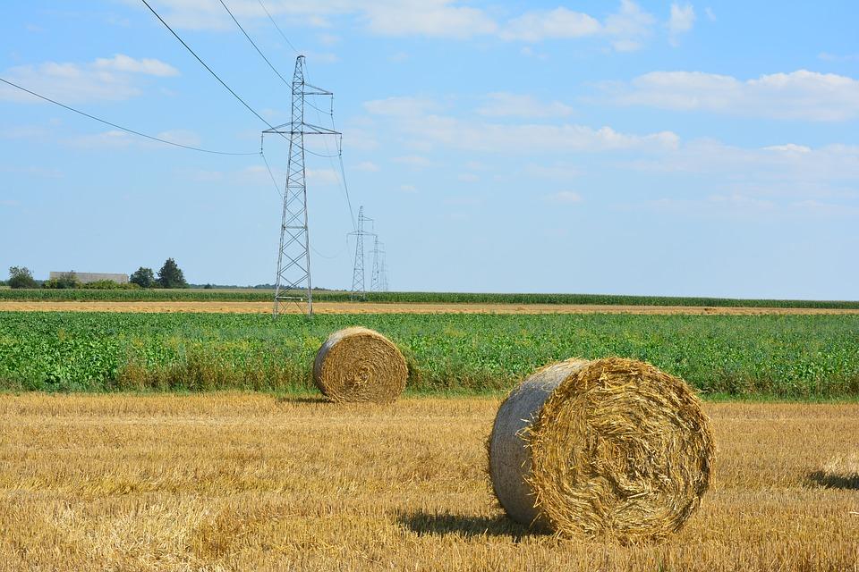 Debate de los ecoesquemas: La propuesta implica que los agricultores deban asumir gastos que el mercado no remunera