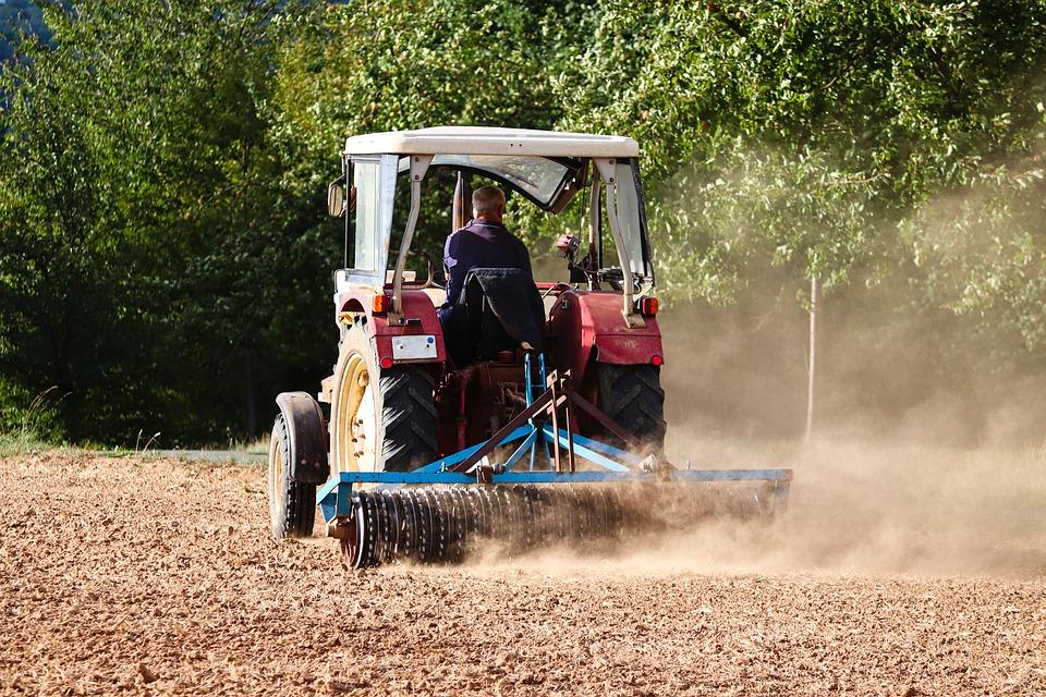 El G20 de Agricultura se compromete a garantizar un sistema alimentario sostenible