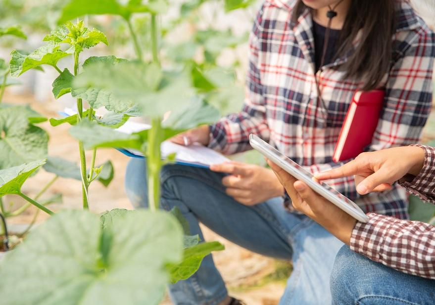 El Gobierno consolida su apoyo al relevo generacional y a la formación de jóvenes agricultores y ganaderos a través del Programa CULTIVA
