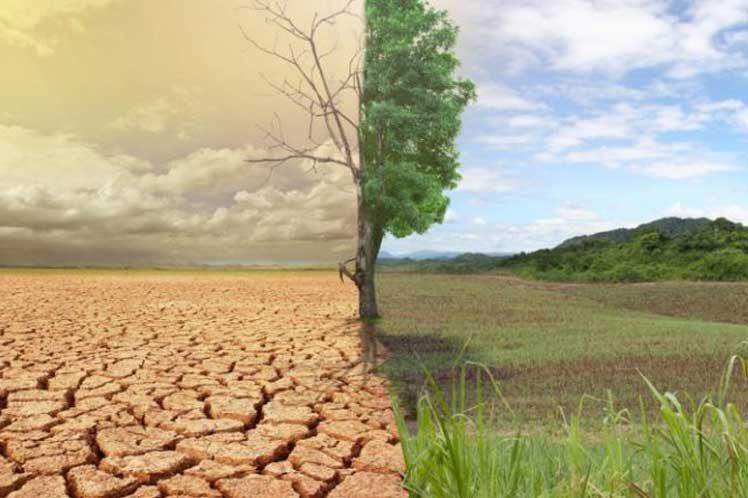 El Gobierno prevé aprobar en 2022 la nueva estrategia contra la desertización y ya apunta a la agricultura y el regadío - 0