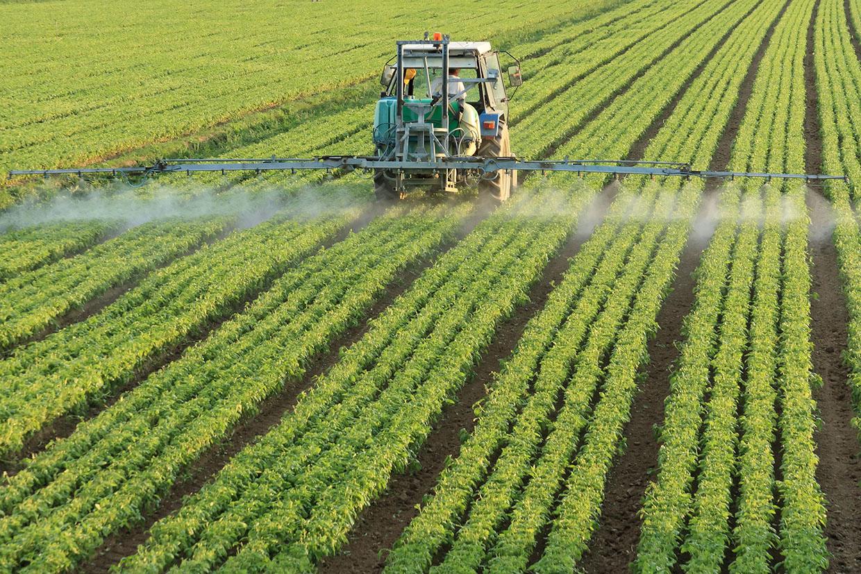 El Ministerio de Agricultura, Pesca y Alimentación prorroga el plazo para presentar la solicitud única de ayudas de la PAC 2020
