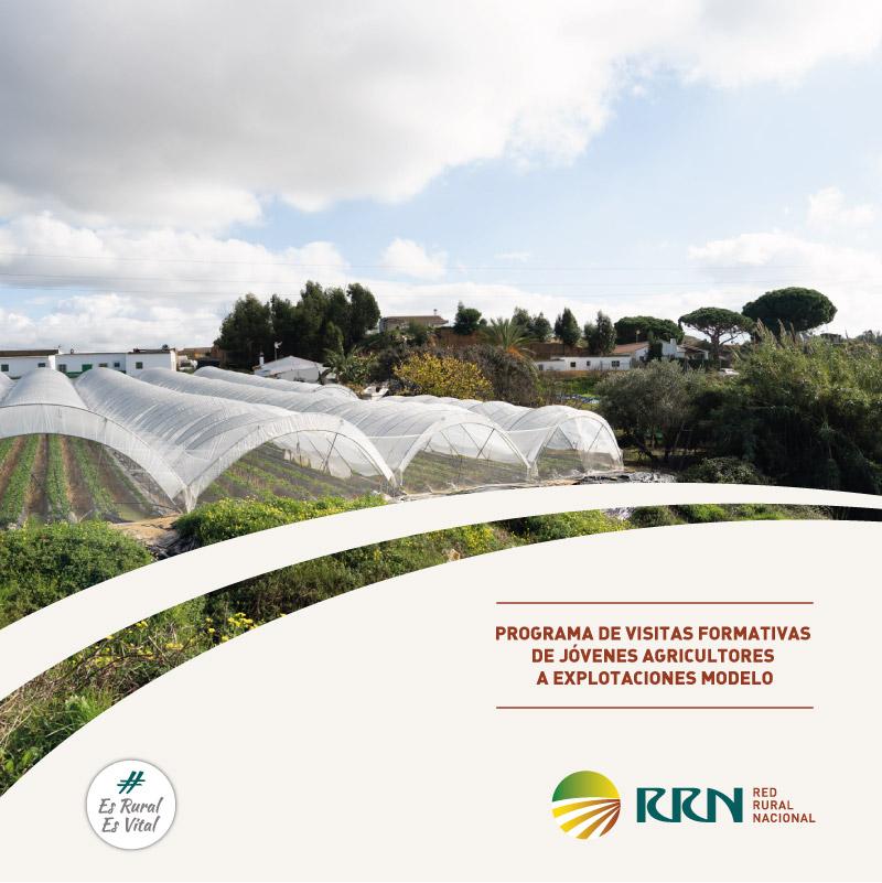 El Ministerio de Agricultura, Pesca y Alimentación destinará un millón de euros a la formación práctica de los jóvenes agricultores en explotaciones modelo