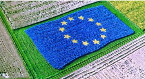 El secretario general de Agricultura y Alimentación resalta que la elaboración del Plan Estratégico de la PAC es un proceso abierto, participativo y transparente