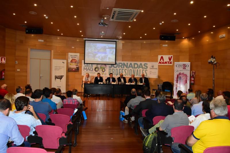 Inaguración de la Feria del Sector Agropecuario y la 31 Exposición Internacional de Ganado Puro, Salamaq 19 - 2