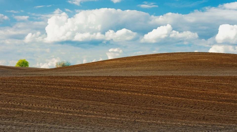 Las matriculaciones de tractores agrícolas crecieron un 2,2% en octubre