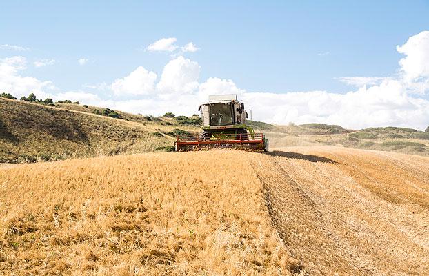 Los agricultores españoles cumplen con el medio ambiente