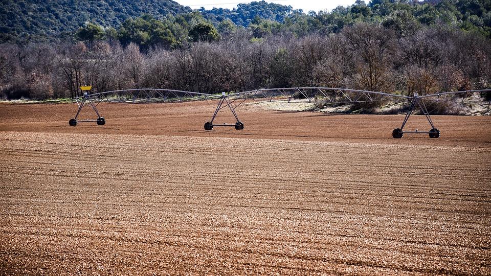Luis Planas señala la modernización de regadíos como una de las grandes apuestas del Gobierno para la rentabilidad agraria - 0