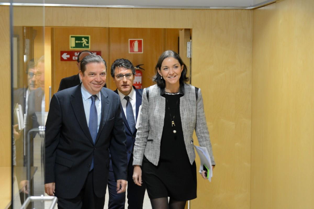 Reyes Maroto y Luis Planas garantizan al sector agroalimentario el compromiso del Gobierno en defensa de los intereses españoles frente a los aranceles de EE.UU. - 3