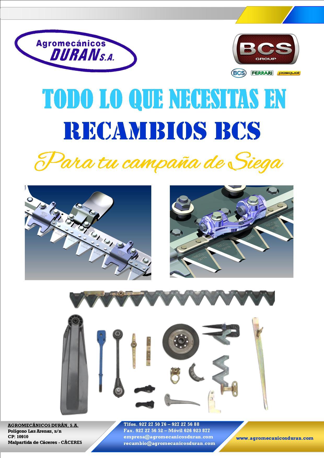 PEQUEÑOS PRECIOS EN RECAMBIOS ORIGINALES BCS